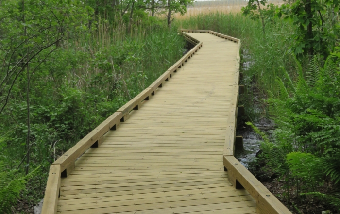 NEW BOARDWALK AT GREAT BAY DISCOVERY CENTER